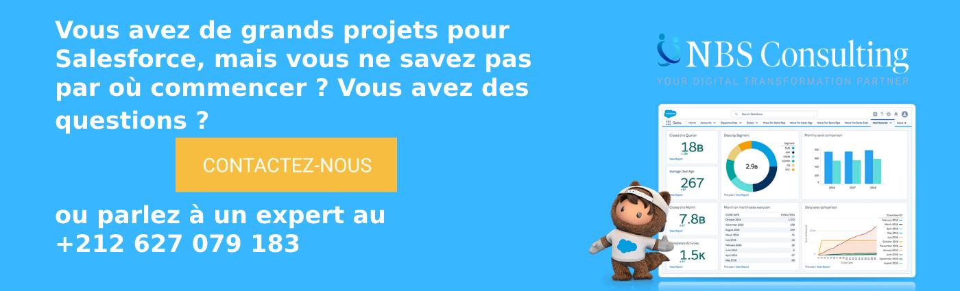 NBS Consulting Salesforce Platinum Partner Maroc Partenaire de votre intégration