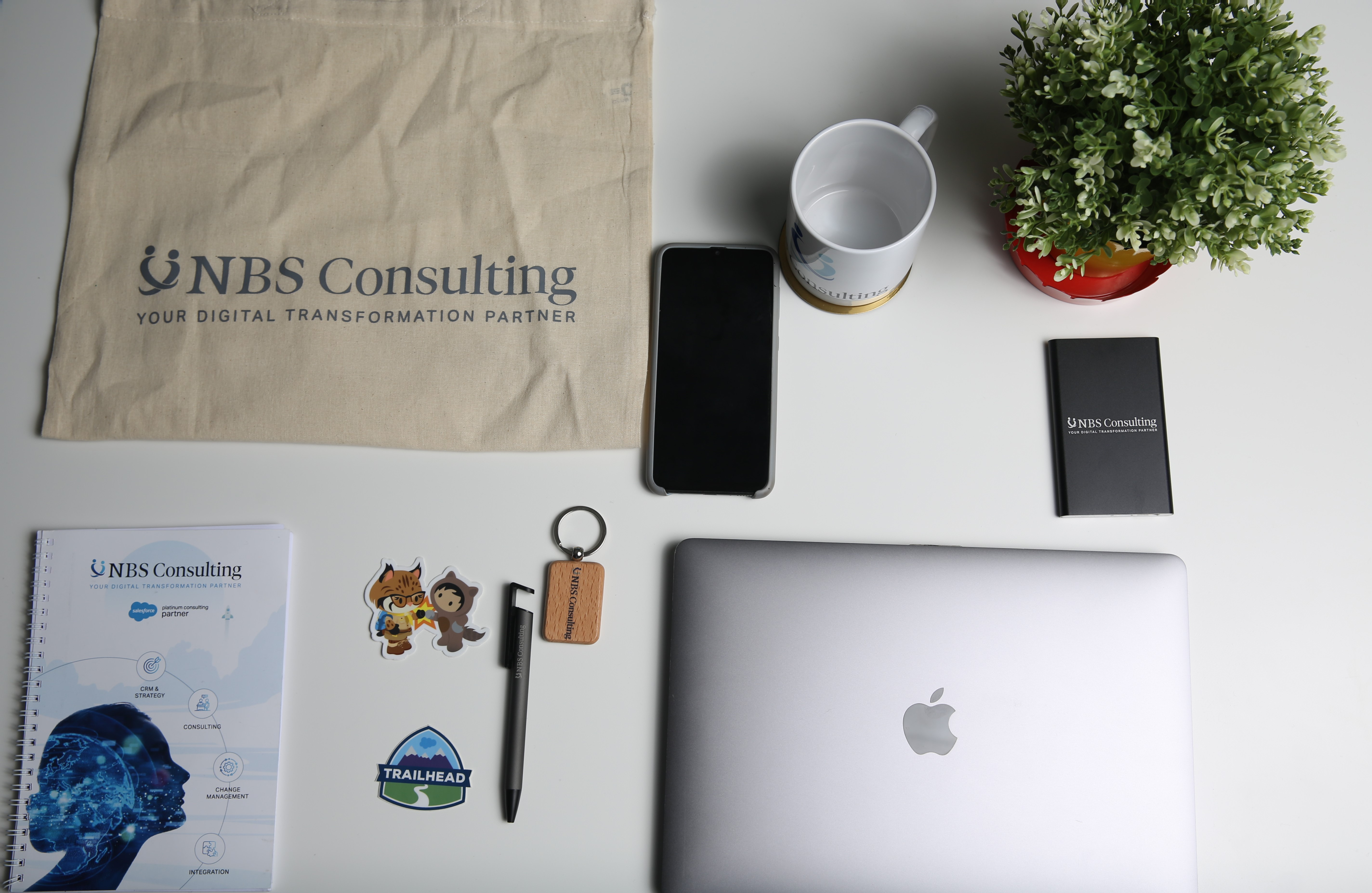 NBS Consulting Carrière